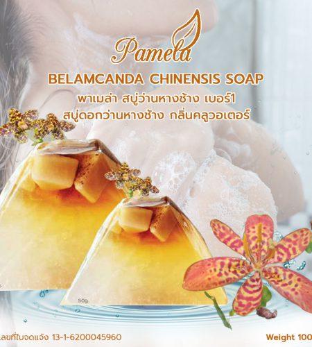 Belamcanda-Chinensis-Soap-สบู่ว่านหางช้าง-เบอร์1-1080x1080-1